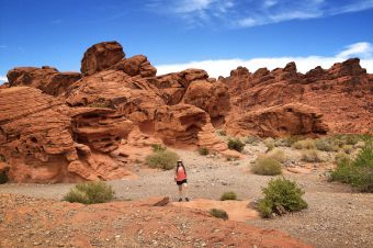 A Startling Encounter at the Valley of Fire, Nevada
