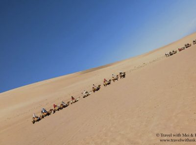 Travel Book: Shadow of the Silk Road